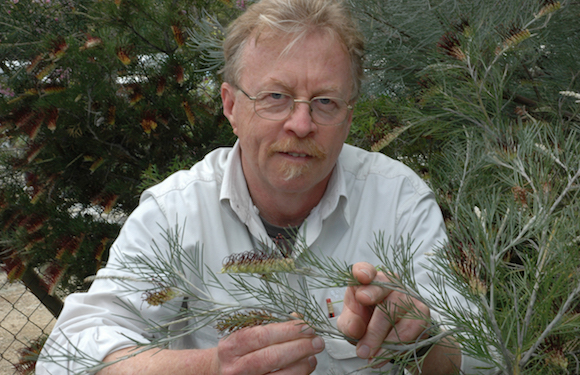 Digby Growns with Grevillea
